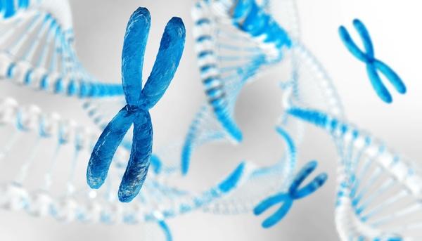 染色体疾患とは?