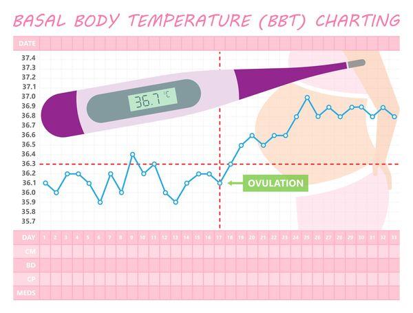 妊娠した時の基礎体温のグラフ